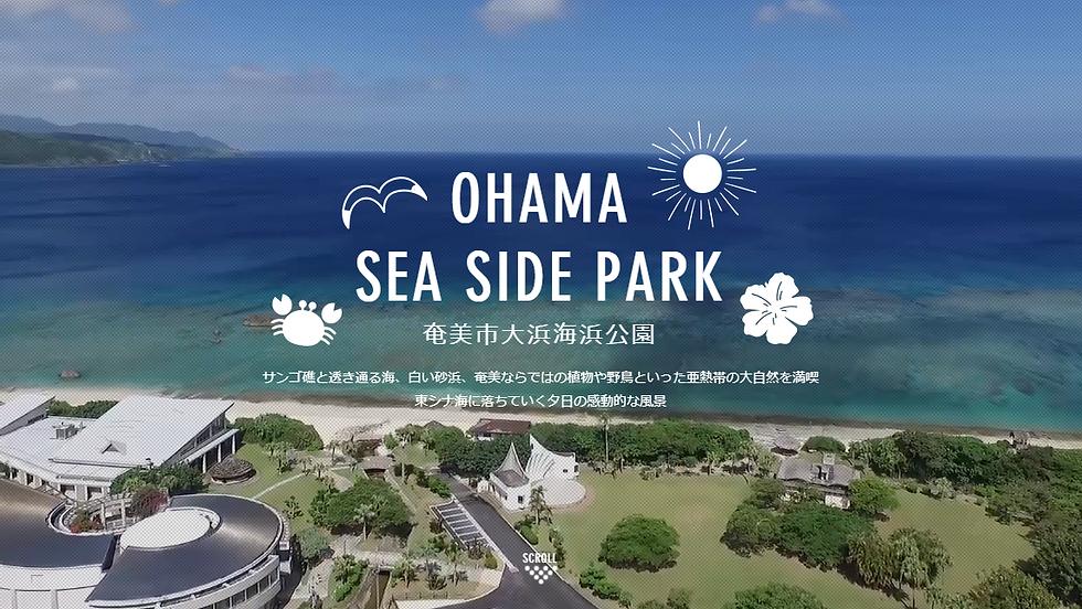 奄美市大浜海浜公園 | OHAMA SEA SIDE PARK 公式サイト
