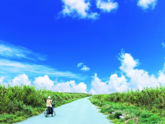 奄美への民泊投資がアツい!?奄美大島の民泊の現状と民泊投資の将来性