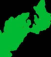 奄美,奄美大島,ダイビング,体験,ダイビングスポット,ダイビングショップ,ファンダイビング,ライセンス,初心者,レンタル