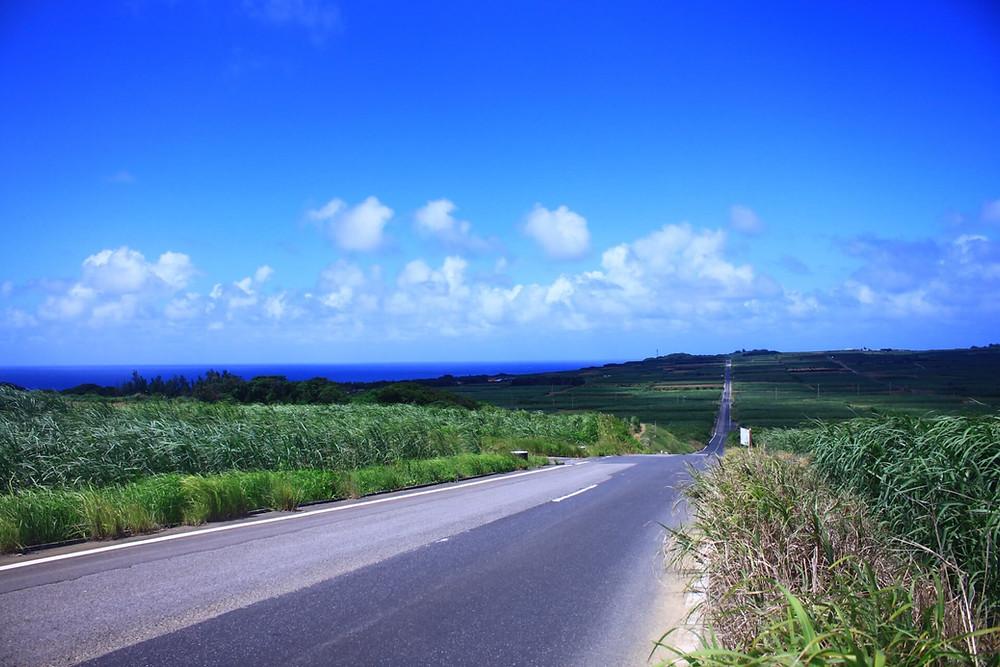 LCCで奄美大島 観光!旅行前にチェックすべきおすすめ観光情報サイト5選