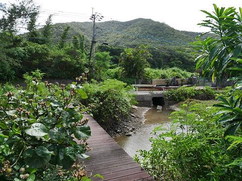 アクセス | 奄美大島 龍郷町のゲストハウス『LeGRANDBLEU(ル・グランブルー)』
