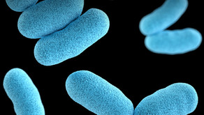 What are pathogens and why do we need to protect against them?