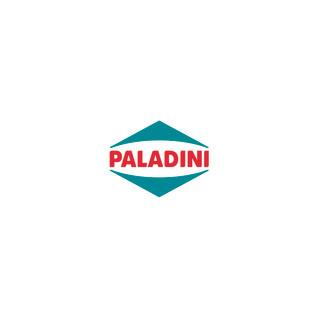 PALADINI 1000X1000.jpg