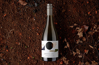 2020 Piccadilly Valley Chardonnay