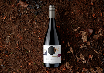 2019 Adelaide Hills Dolcetto