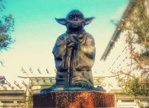 What you can learn from finding your Yoda