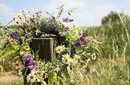 midsummer-flowers.jpeg