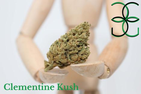 Clementine Kush