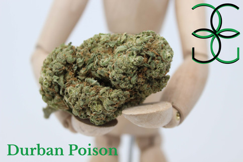 Durbn Poison