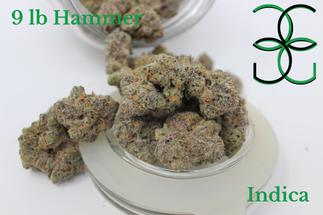 9 lb Hammer