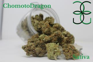 Chomoto Dragon