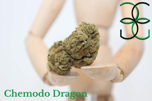 Chemodo Dragon