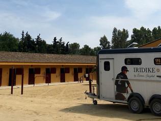 Iridike Polo y su interesante propuesta en España