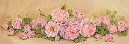 Sweet Angelina Roses