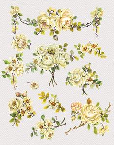WHITE ROSES CLIPART-CatRisi.jpg
