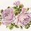 Thumbnail: Rose De Amor