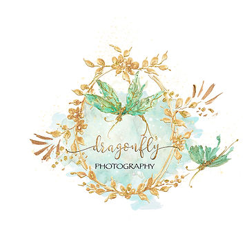 Dragonfly Elegance-CatRisi Premade Logo-