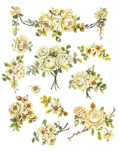 White Roses Watercolor Clipart