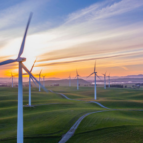 The Keys to Environmental Communications: How to Encourage Greener Consumer Practices