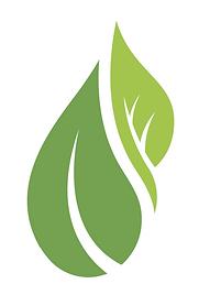 Moyas Wellness Logo copy.png