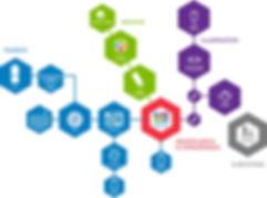 IDEX Optofluidic Pathway