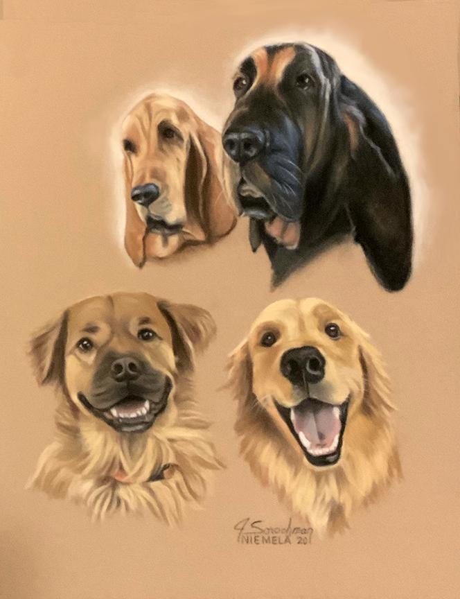 """Duke, Barney, Remy & Cisco"