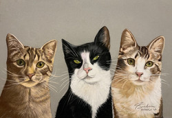 Bandit, Sylvester & Basil