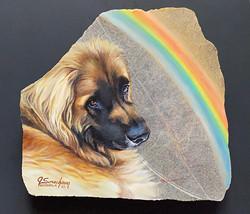 "Joey ""over the rainbow"""