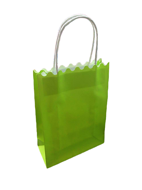 Plain Green Paper Bag