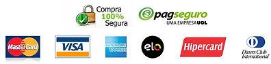 Logos-Cart-es-de-Cr-dito-com-Logo-Pagseg