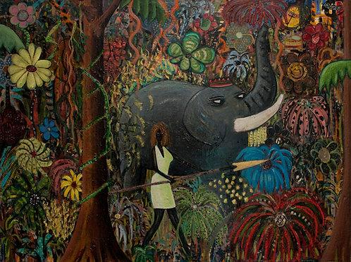Jungle Woman : David Boyle