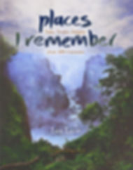 cover places I remember.jpg