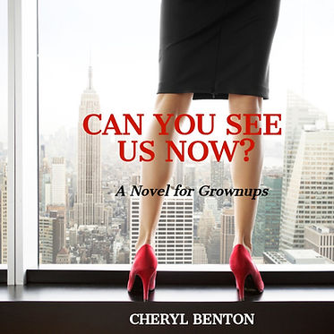 audio book cover can you see us now.jpg