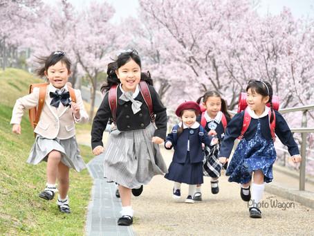 桜撮影会開催 3月28日、29日、30日、4月5日