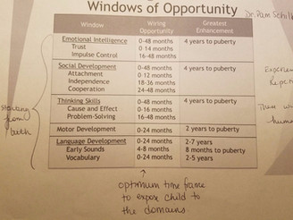 Windows of Opportunity During Child Development
