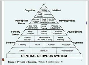 Williams Pyramid of Learning