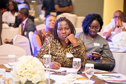 The Ghana CEO Summit 2017 by Brandason
