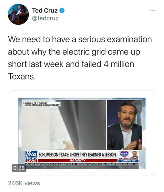 "Ted Cruz - ""We need to have a serious investigation into the electric grind in TX"""
