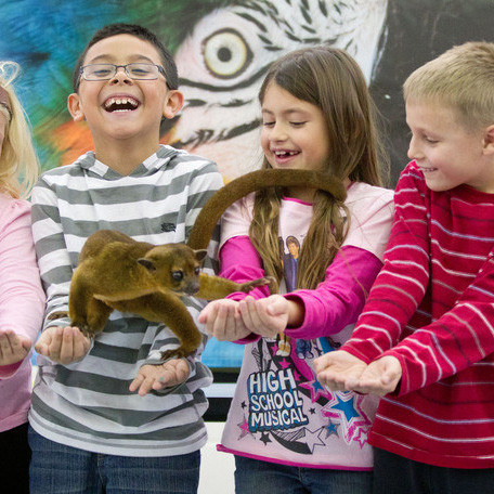 Wildlife+Encounters+School+Programs.jpg