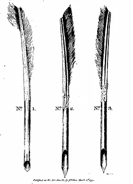 Image of quills from Wilkes' The Art of Making Pens Scientifically