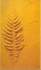 Frans Krajcberg, empreinte jaune