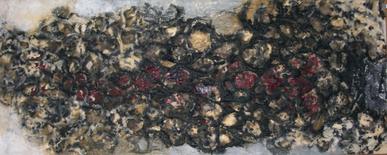 Frans Krajcberg, empreintes