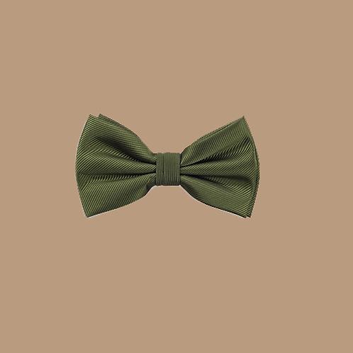 Fliege grün