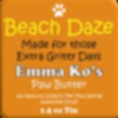 BeachDaze.png