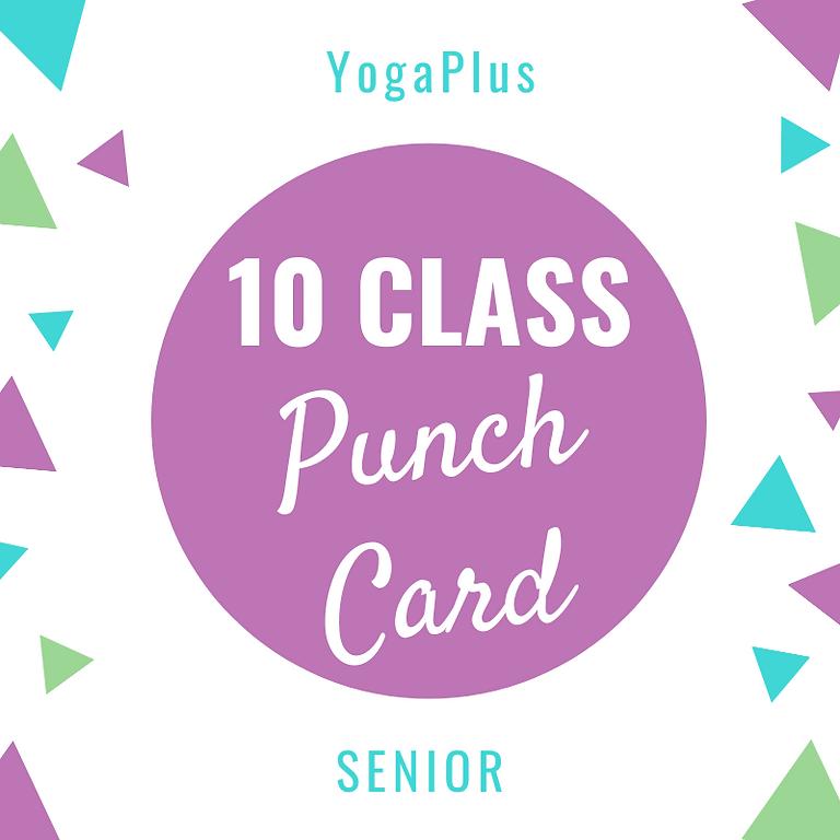 Senior 10 Class Punch Card
