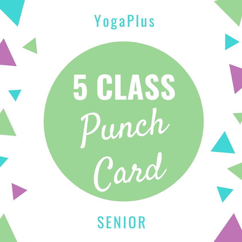 Senior 5 Class Punch Card