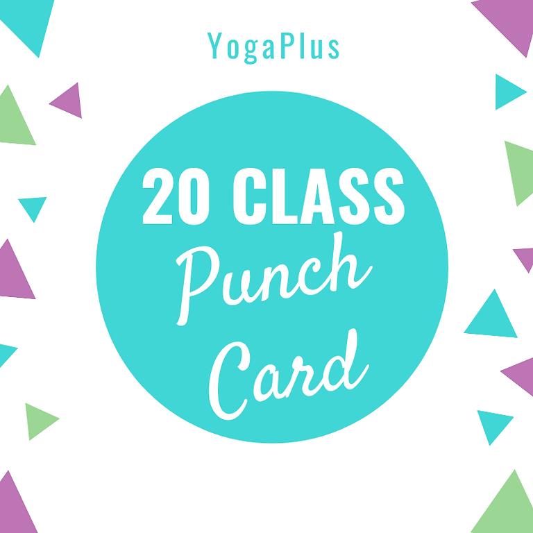 20 Class Punch Card