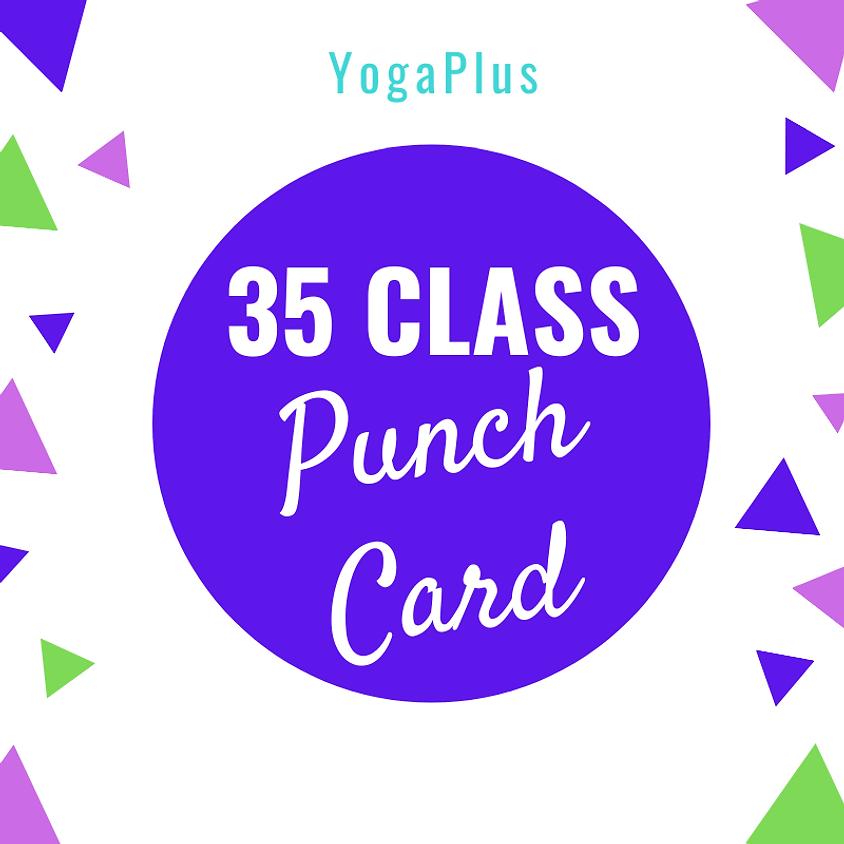 35 Class Punch Card