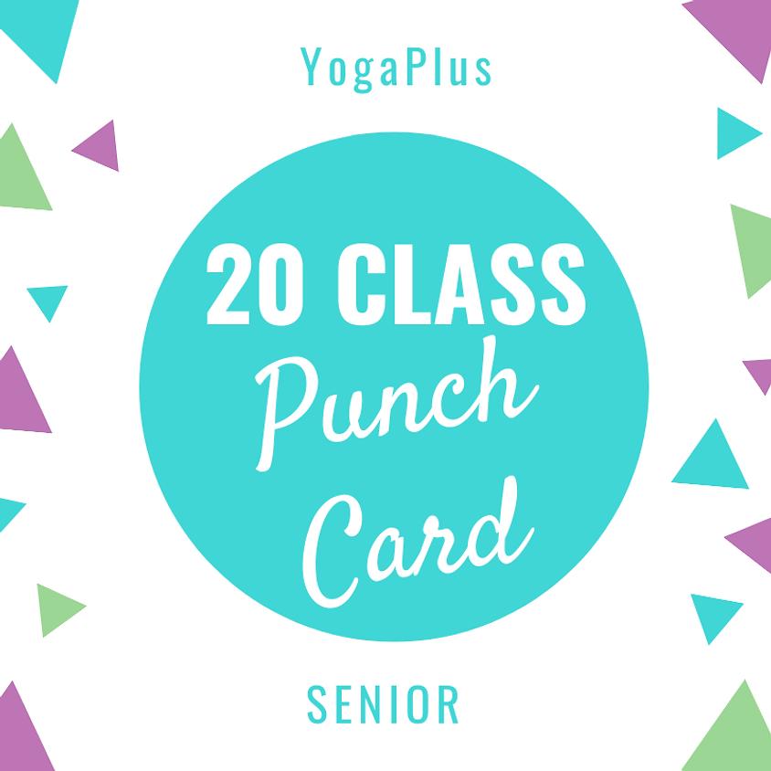 Senior 20 Class Punch Card