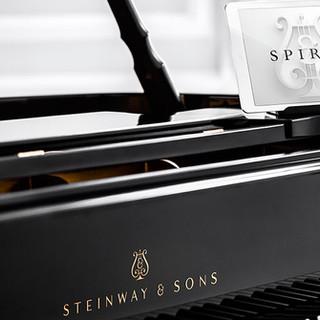 Popular music recording artist (Steinway & Sons)